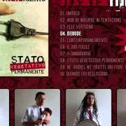 Album Stato vegetativo permanente