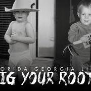 Album Dig your roots
